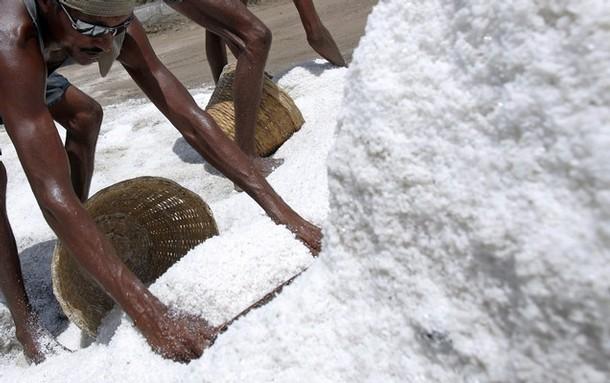 INDIA-SALT-LABOUR