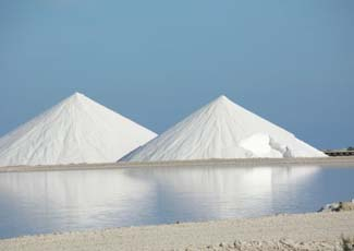 salt1w